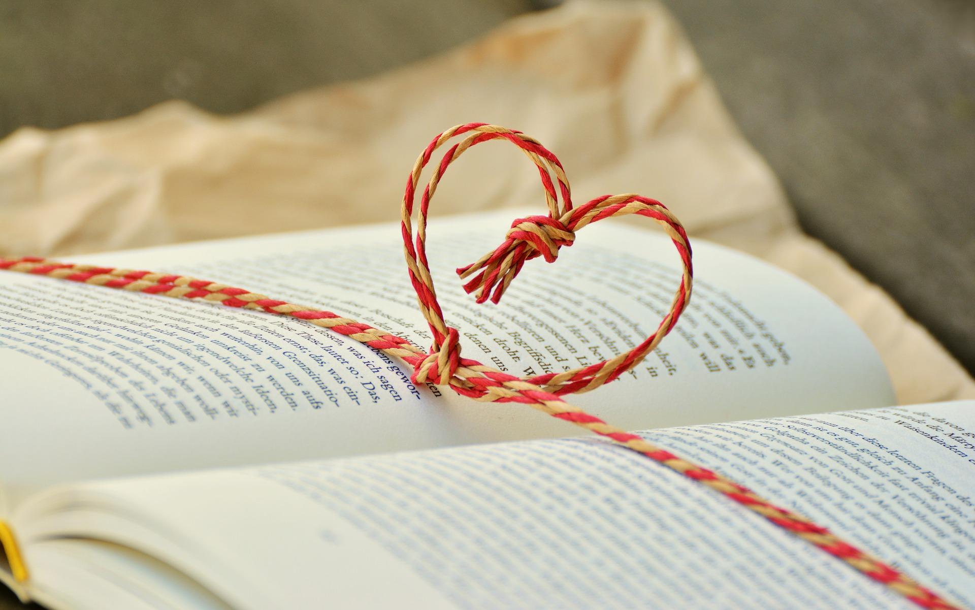 Magnesium Bücher Empfehlungen